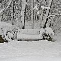 Lonely In Winter by Barbara S Nickerson