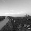 Lonely Road II by Dan Julien