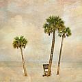 Lonely Shores by Stephen Warren