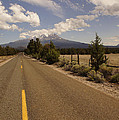 Lonesome Hiway To Shasta by Mick Anderson