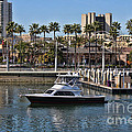 Long Beach Harbor by Tommy Anderson