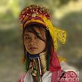 Long Neck Beauty Karen Tribe by Bob Christopher