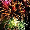 Longwood Fireworks by Sheila Rodgers