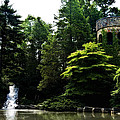 Longwood Garden Castle by Bill Cannon