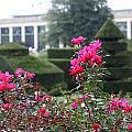 Longwood Gardens by Paul Slebodnick