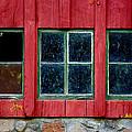 Look Throught Any Window by Vicki Pelham