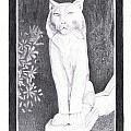 Los Gatos Cat Statue Leo by Teri  Naomi