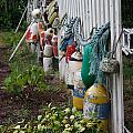 Lost Buoys 1 by Tony and Kristi Middleton