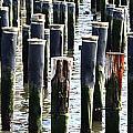Lost Dock by Carol Ann Thomas