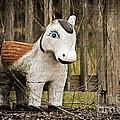 Lost Pony by Scott Pellegrin