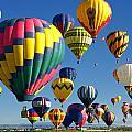 Lots Of Balloons by Joe Myeress