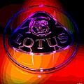 Lotus by George Pedro