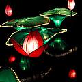 Lotus Lanterns 4 by Greg Matchick