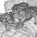 Lounge Lizards - Doberman Pinscher Dog Art Print by Kelli Swan