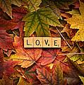 Love-autumn by  Onyonet  Photo Studios