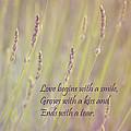Love by Kim Hojnacki