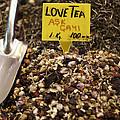 Love Tea by Leslie Leda