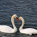Lovers by Mike Martin