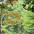 Loving The Season Of Autumn by Maria Urso