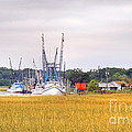 Low County Marsh View Shrimp Boats by Scott Hansen