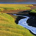 Low Tide At Sunset, Minas Basin, Kings by Ron Watts