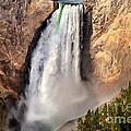Lower Falls Of Yellowstone by Robert Bales