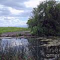 Lower Klamath Wildlife Refuge by Methune Hively