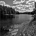 Lower Madawaska River by Yves Pelletier
