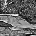 Lower Tahquamenon Falls 6140b by Michael Peychich