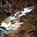 Lower Twin Falls by Larry Ricker