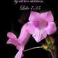 Luke 7 35 Pink Penstemon Flower by Randall Branham