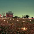 Luminaries In The Pasture 11 by Judi Quelland