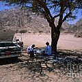 Lunchtime In The Desert Of Sinai by Heiko Koehrer-Wagner