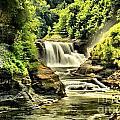 Lush Lower Falls by Adam Jewell