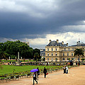 Luxembourg Gardens 2 by Andrew Fare