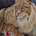 Lynx Mom And Baby by Dee Carpenter