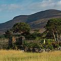 Maccarthy Mor Castle Ireland by Douglas Barnett