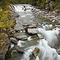 Macdonald Creek by Idaho Scenic Images Linda Lantzy