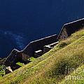 Machu Picchu Peru 5 by Xueling Zou