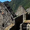 Machu Picchu Peru 8 by Xueling Zou