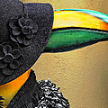 Madame Toucan Of New Orleans by Kathleen K Parker