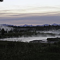 Madison River Morning At Baker's Hole by Kenneth McElroy