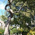 Magestic Tree by Aisha Karen Khan
