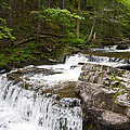 Maggies Falls Lower Through A Green Forest by Justin Sweeney