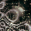 Magic Nights by Linda Sannuti