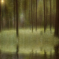 Magical Forest by Diane Dugas