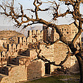 Magical Fort Kumbhalgarth  by Kantilal Patel