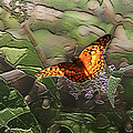 Magical Places For Butterflies by Ericamaxine Price