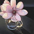 Magnolia Blossom In Glass Mug by Steven Tetlow