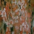 Magnolia by Janie Apostolakos